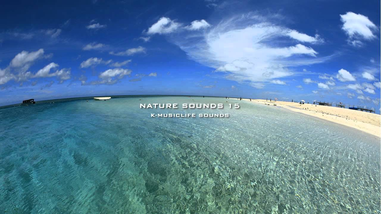 Nature Sound 15 THE MOST RELAXING SOUNDS YouTube