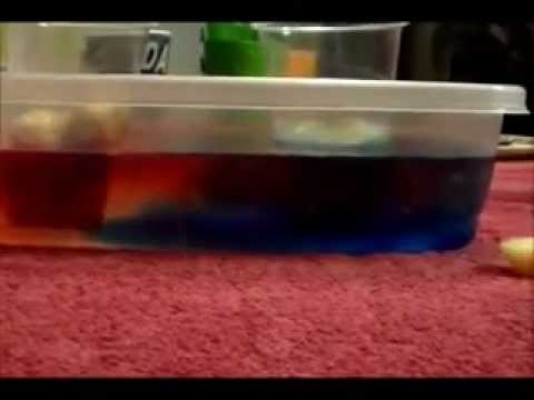 Convection Currents Lab Convection Currents Lab