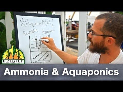 Ammonia &amp  Aquaponics