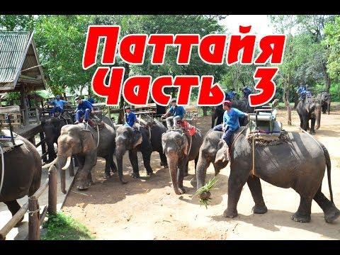 Паттайя (Тайланд) - река КВАЙ, еда и тайская кухня, катание на слонах (Часть 3)