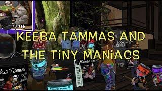 Keeba Tammas and the Tiny Maniacs Raglan Shire Artwalk 2018