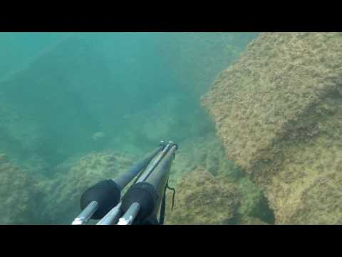 Spearfishing with Cressi Comanche  in alex part 1