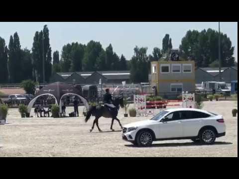 change_video_youtube2('pzjDv0QvzMI','Anibale de Hus');