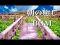 朝に聴きたい、爽やかな音楽【癒しのBGM】~綺麗なピアノの旋律でリラックス~