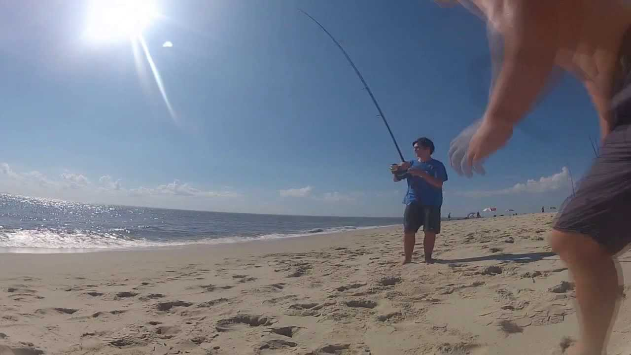 Surf fishing for sharks in nj youtube for Nj surf fishing reports