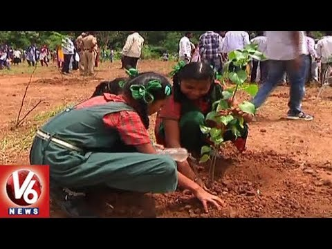 CM KCR Review On 4th Phase Of Haritha Haram Launch Event | Hyderabad | V6 News