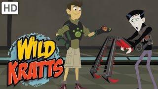 Wild Kratts 🤖 Part 3: Creature Rescue from the Robotics Expert | Kids Videos