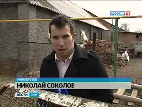 В Миллеровском районе задержали стадо 'нелегалов'