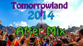 Tomorrowland 2014 - This Is The Madness ( August )