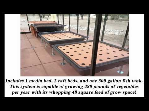 Backyard/Home Aquaponics Systems