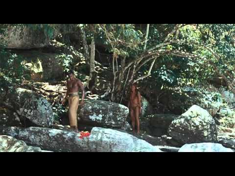 Besouro O filme.2009.