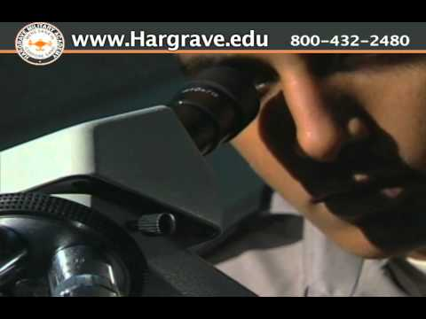 Virginia Summer Camp - Hargrave Military Academy