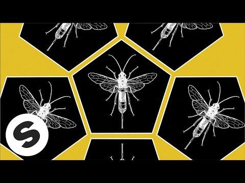 Tom Staar & Brian Cross - Hornets Nest (Official Music Video)