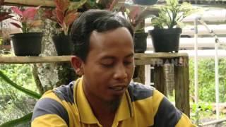 MERAJUT ASA - SI PEDAS PENGGUGAH SELERA (13/1/17) 3-3