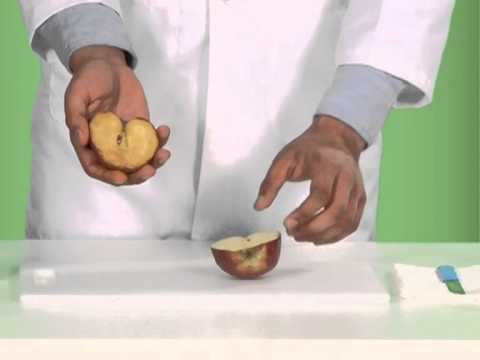 Product Demonstration   Nutrilite Bio C video