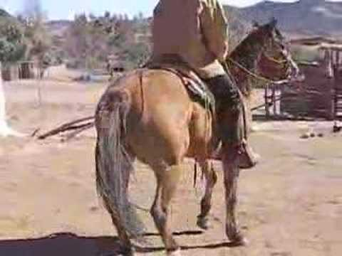 Bounty Behind the Scenes: Cowboy riding horse