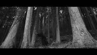 Ozuna (odisea) album