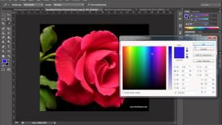 Techalarmbd.com-Photoshop Basic Tutorial part 18