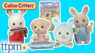 Calico Critters Baby Band Series Blind Bag from Epoch Co