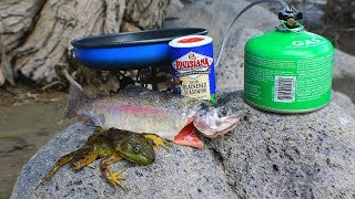 Catch and Cook Frogs & Trout at the Creek!
