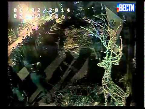 Видео ночных погромов в киевском ресторане