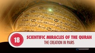 Video: In Quran 36:36, the Creation is in pairs - Quran Miracle