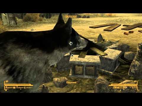 Le chien pète un boulon - Fallout NV