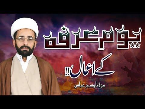 Yaum-E-Arafa Ky A'amaal !! | Maulana Waseem Abbas | 4K