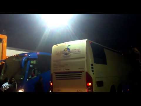 Autobuses de La Arrolladora Banda el Limon y Banda Pequeños Musical