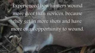 250 bow hunted deer not reported in NY shelter Island in 2008 - why would that be so?