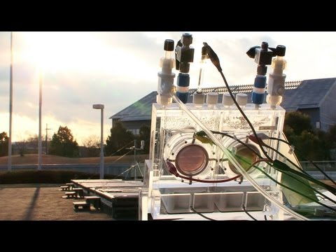 Artificial Photosynthesis System as efficient as plants and can reduce CO2 levels #DigInfo