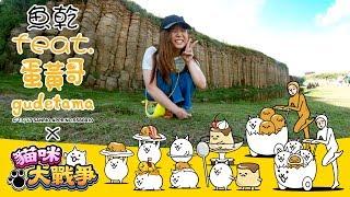 【魚乾】貓咪大戰爭!蛋黃哥與貓咪的絕配饗宴!