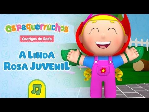 Os Pequerruchos - A Linda Rosa Juvenil [DVD Cantigas de Roda]