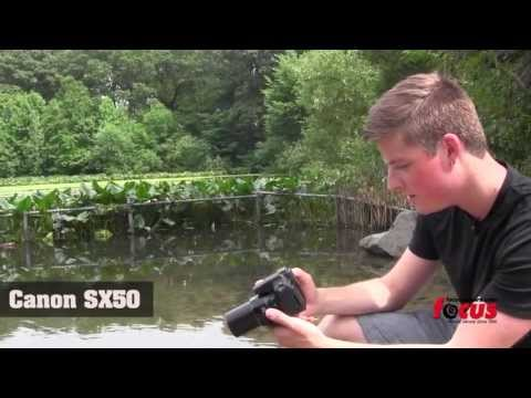 Canon Sx50. Sony HX300. and Nikon P520 Comparison