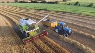 Claas Dominator Harvesting Barley -July 2016