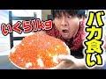 【大食い】いくら1kgで超巨大いくら丼作ってみた!これぞ男の夢!!! thumbnail