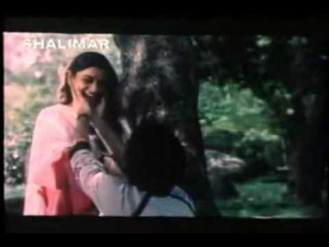 Ilayaraja Hits - Pallavi Anupallavi - Kanulu Kanulu video