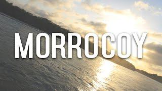 download lagu Morrocoy Venezuela 2016 gratis