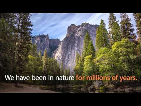 Jonathan Jarvis – IUCN World Conservation Congress 2016