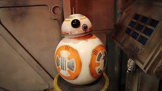 Star Wars Day | May the 4th at Disney's Hollywood Studios