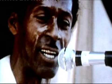 Chuck Berry - Hail Hail Rock n Roll