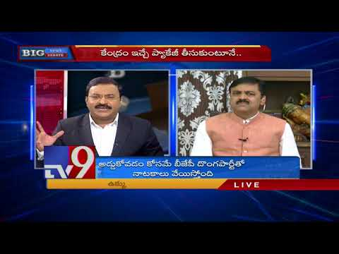 Big News Big Debate || AP Govt prefers Special Package to Special Status ? - Rajinikanth TV9