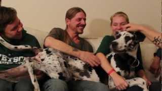 Take Me Home - Documentary - Timothy Lewis Band