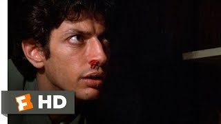 Invasion of the Body Snatchers (2/12) Movie CLIP - Examining a Pod Body (1978) HD