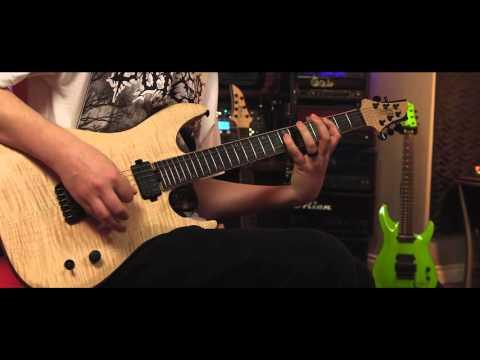 Seymour Duncan Palladium Gain Stage- Metal