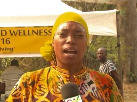 African Culture and Wellness Festival 2016