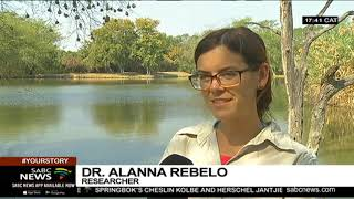 SAWA holds an indaba on Wetlands and Climate Change