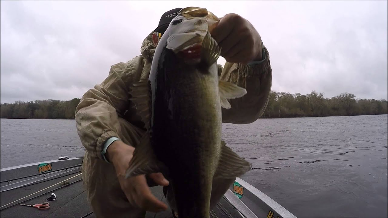 Bass fishing florida in bad weather with m amp j jigs on for Bass fishing in the rain