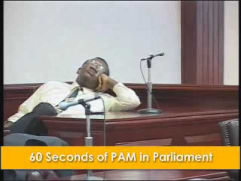 60 Seconds of Eugene Hamilton in Parliament