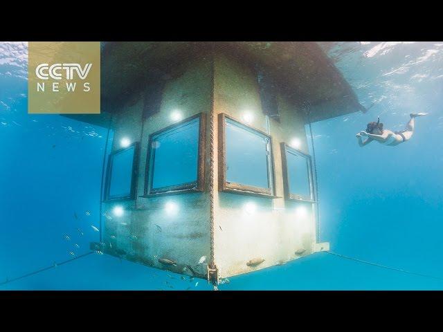 Submarine honeymoon: Underwater room for newlyweds in Tanzania